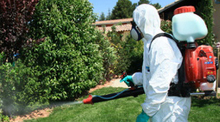 Knapsack Sprayer Training